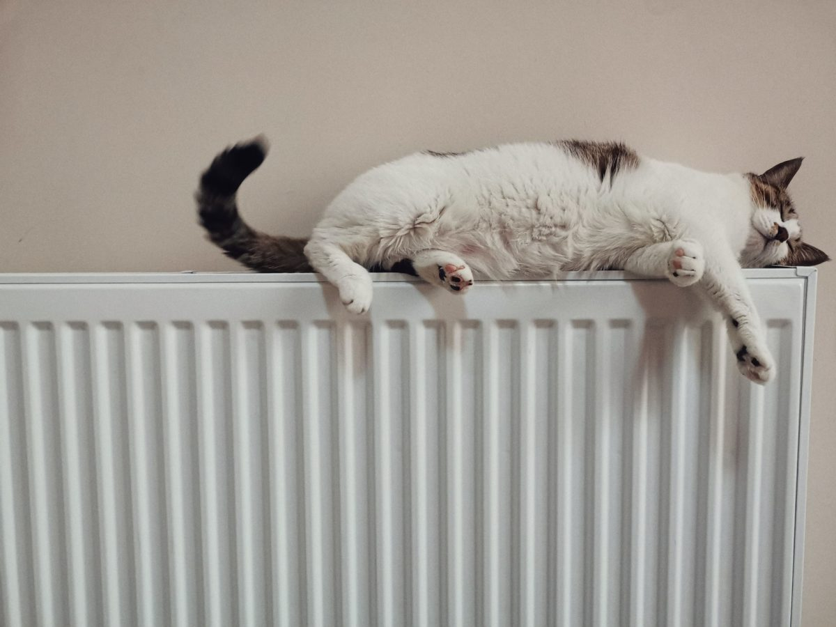 How People in Brighton and Hove Can Keep Their Home Heating Bills Down