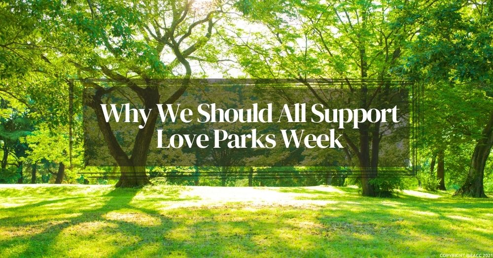 How You Can Celebrate and ProtectBrighton and Hove Parks