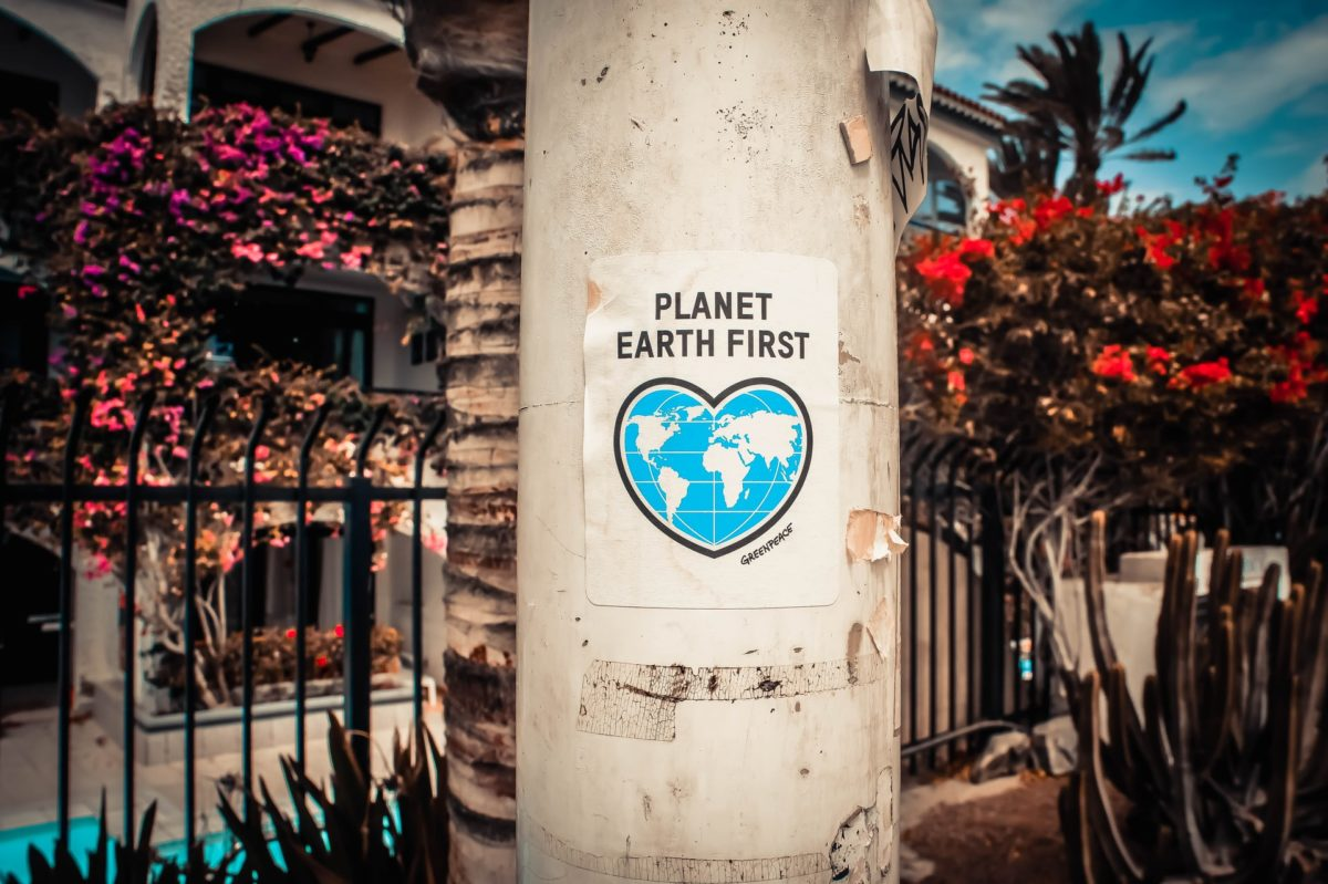 Seven Ways you can Help the Planet in Brighton and Hove