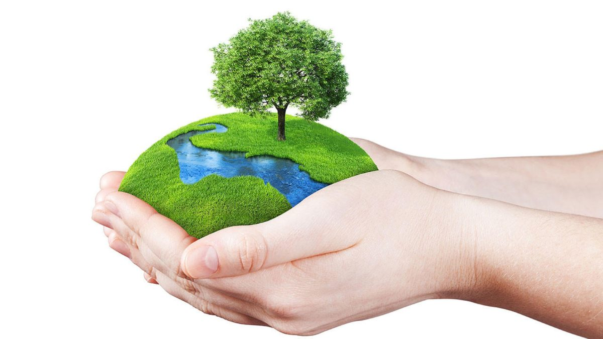 How to care for the Earth AND your Brighton and Hove home