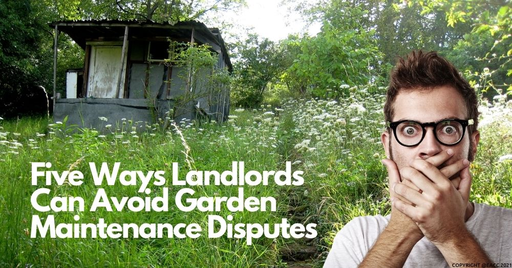 Five Ways Brighton and Hove Landlords Can Avoid Garden Maintenance Disputes